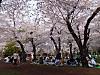 3asukayamapark